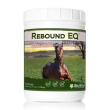 Rebound EQ | BioStar US