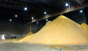 Distiller's Grain