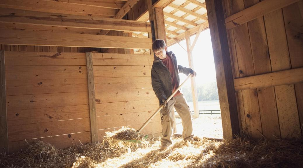 how to muck out a stall