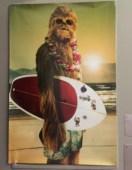 BioStar Kemosabe's favorite Wookie