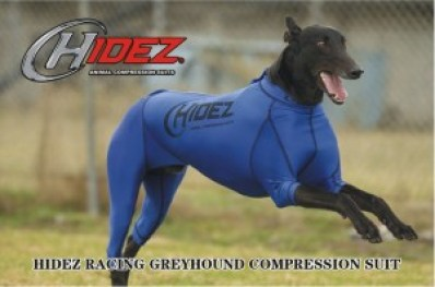 greyhound compression suit