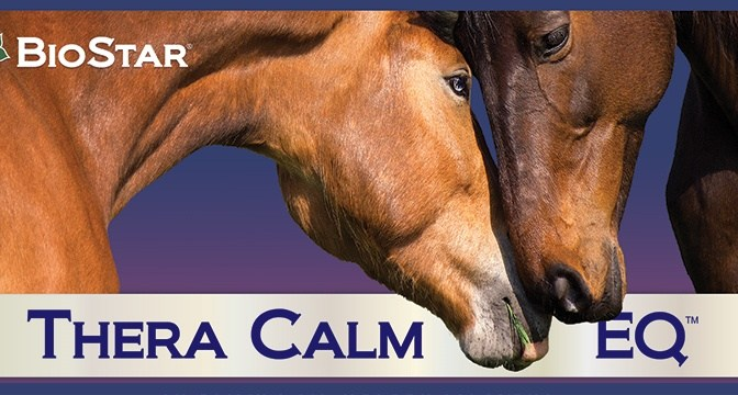 Thera Calm EQ detail - Calming formula for horses