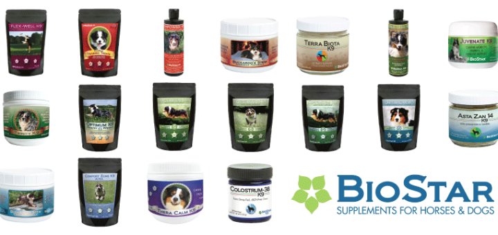 """choosing-equine-supplements-what-when-and-why"""