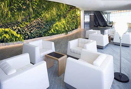 qantas-lounge-sydney