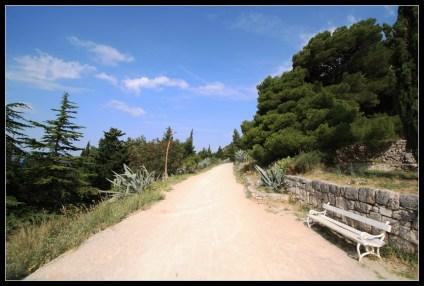 Put agava bez broja