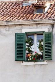 Prozor sa cvijećem, Šibenik, Hrvatska