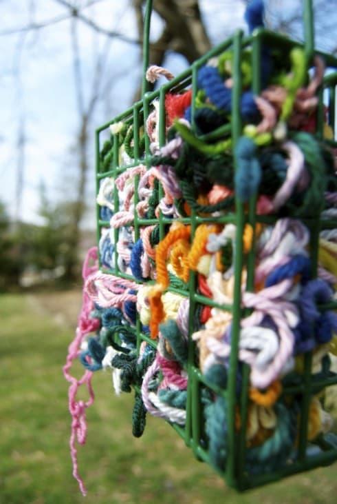 Fill a Bird Feeder With Yarn