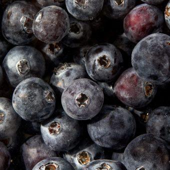 beautiful greenmarket blueberries