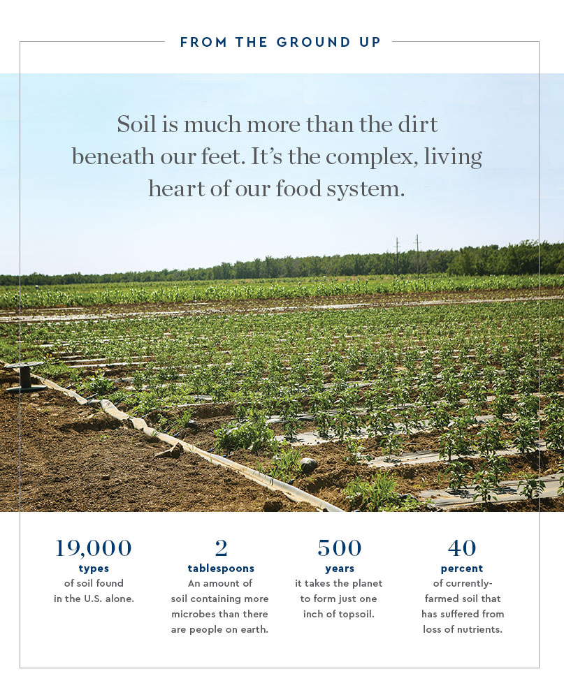 0112_soil-mission_blog_05