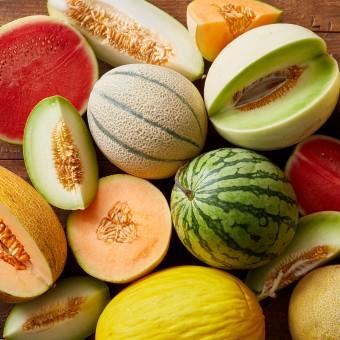 Melons_Social_080819_34444-340x340