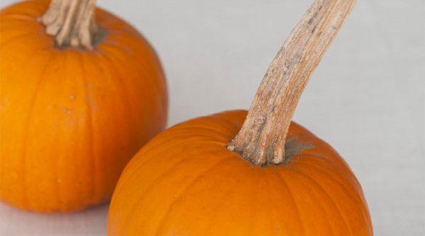 pumpkin christmas centerpiece