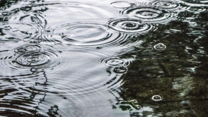車椅子で雨のディズニーランド