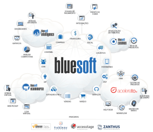 bluesoft-ecosistema