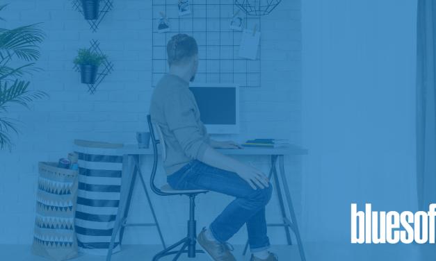 Bluesoft Sistemas completa dois meses operando em home office e segue contratando, apesar do cenário no mercado