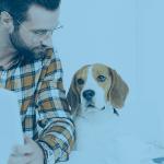 Varejo Pet: por que você deveria investir?