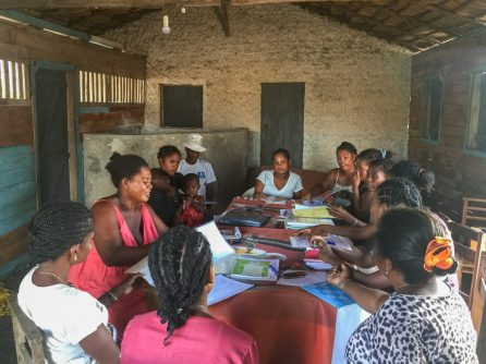 Monthly meeting between CHWs and Blue Ventures Safidy staff