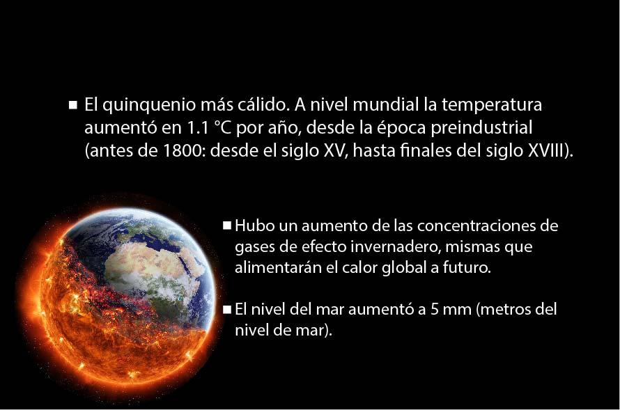 CCVIDA.02
