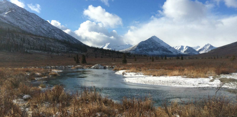 tombstone-outfitters-yukon-hunting-7993