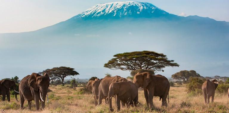 estampas-de-tanzania-para-inspirar-tu-viaje-1