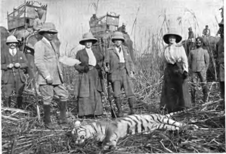 магараджа с тигром