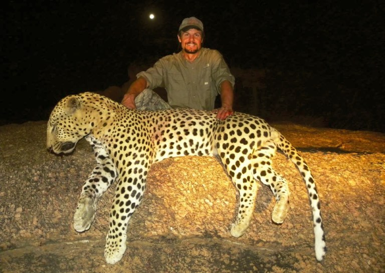 The leopard harvested in Namibia