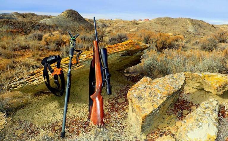 hunting rifle stick binoculars