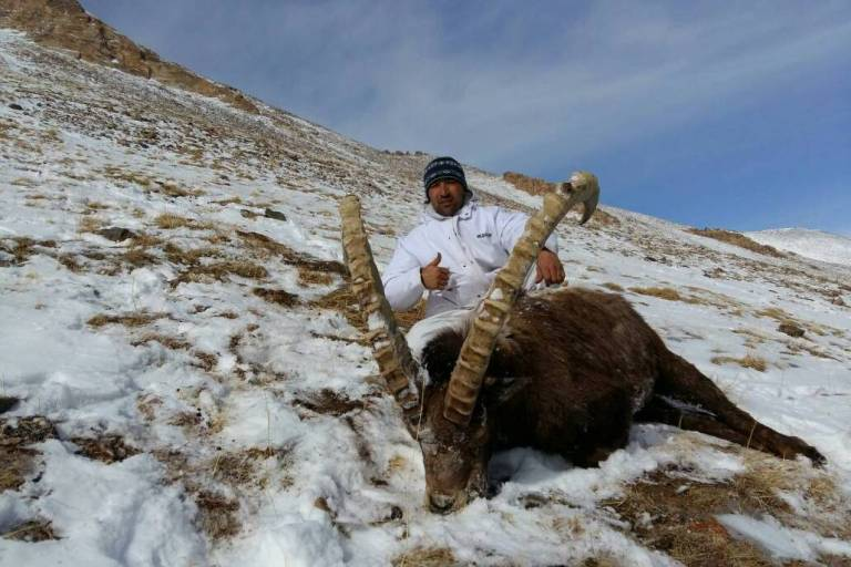 A Tajik guide with a trophy harvested by his client