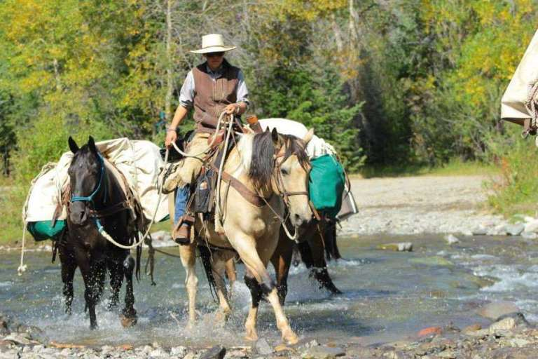 A hunting guide leading a pack horse caravan across a river in Wyoming