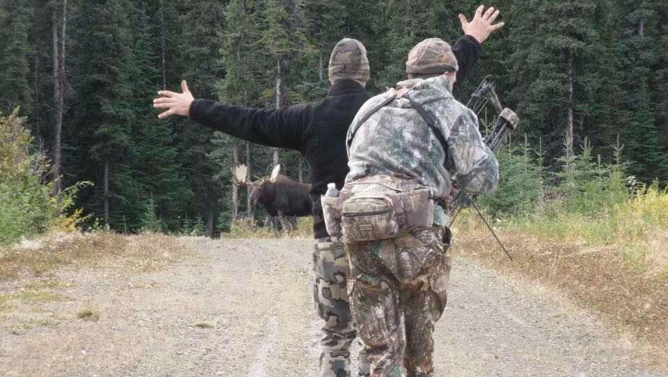 A bowhunter, a guide, a moose