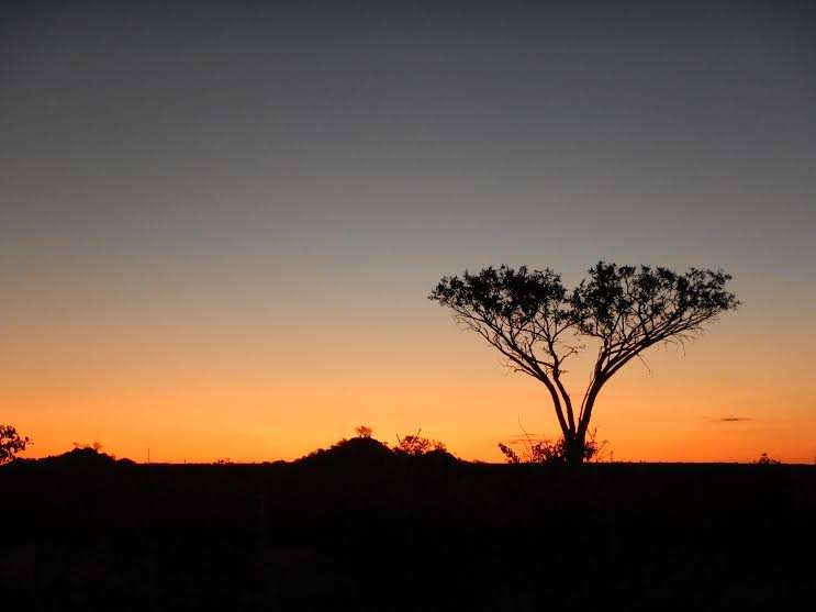 A sunset on a hunting safari in Africa