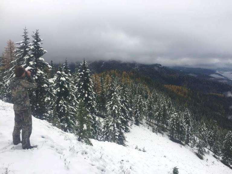 elk Idaho landscape snow.jpg