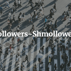Followers-Shmollowers