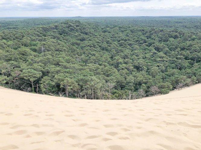 Дюна - Dune du Pyla 2