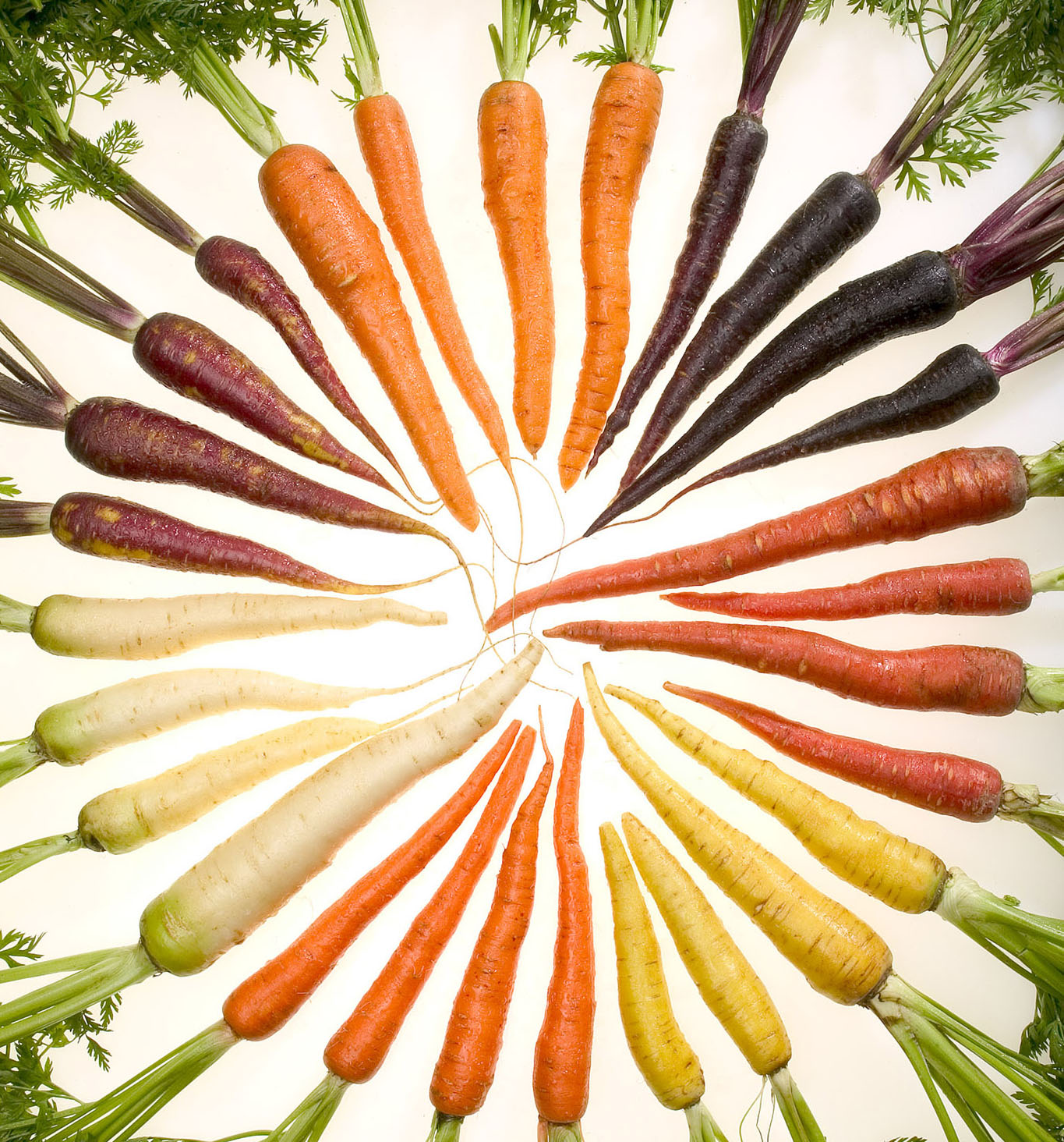 Rainbow Carrots A Royal Treat Bountiful Baskets Blog
