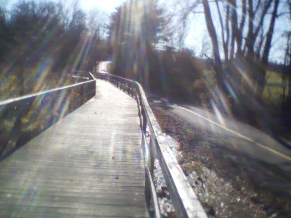 I took the boardwalk that runs sort of parallel to the paved greeway path, but cuts off the corner somewhat.