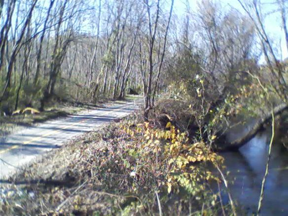 The Oklawaha river runs by the greenway (Also known as Mud Creek.)