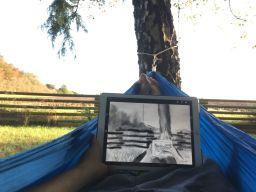 Efterårs-tegning på iPad i hængekøjen