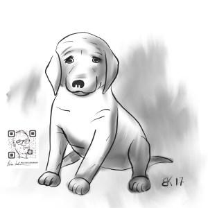 How to Draw A Popie dog - Sketch 47