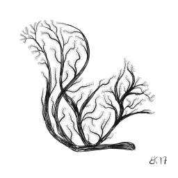 Sketch 0068