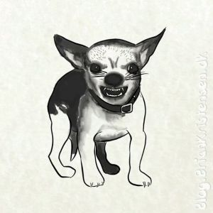Drawing Angry Chihuahua - Sketch 331
