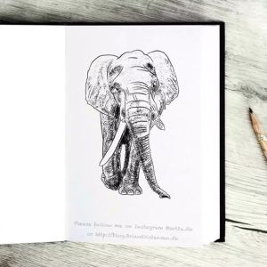 Drawing an Elephant - Sketch 369