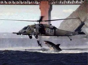 Fake shark/helicopter pic