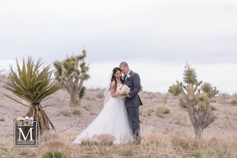 Bridal Spectacular_0536Joey&Janiel