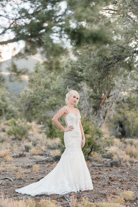 Bridal Spectacular_KMH Photography, Mt. Charleston, Kristina 59