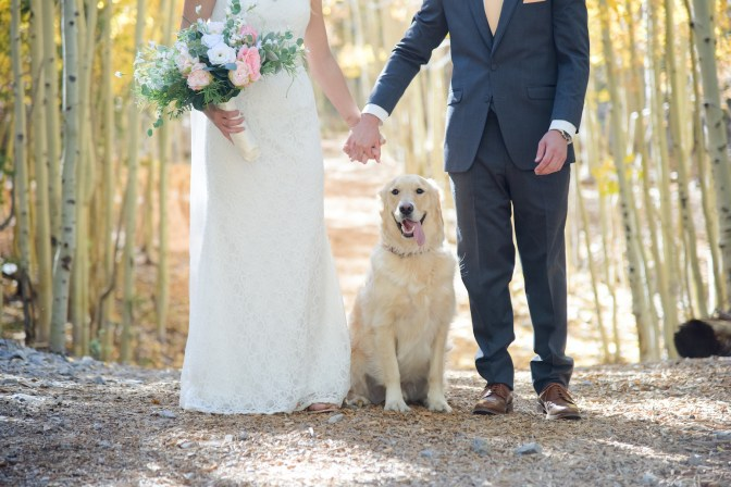 Bridal Spectacular_MBP-Cadi and Alex- Lee Canyon LV (10)