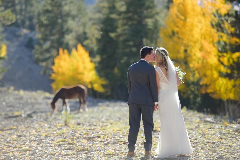 Bridal Spectacular_MBP-Cadi and Alex- Lee Canyon LV (11)