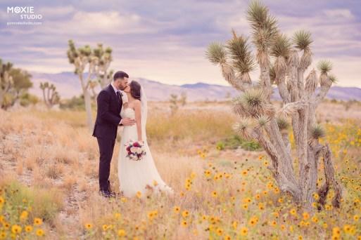 Bridal Spectacular_MOX48721