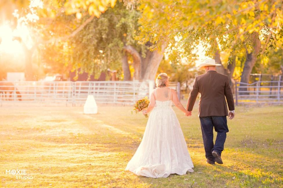 Bridal Spectacular_MOX49199