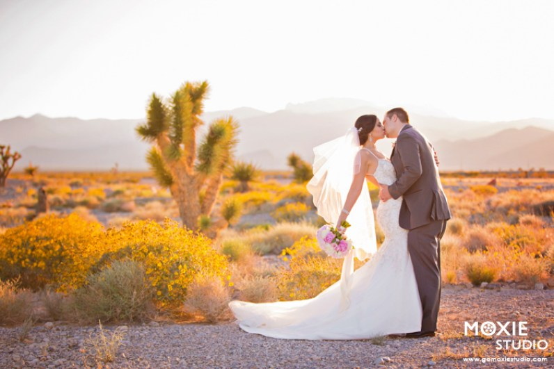 Bridal Spectacular_Moxie Studio at Las Vegas Paiute_Alyssa & Tyson_09