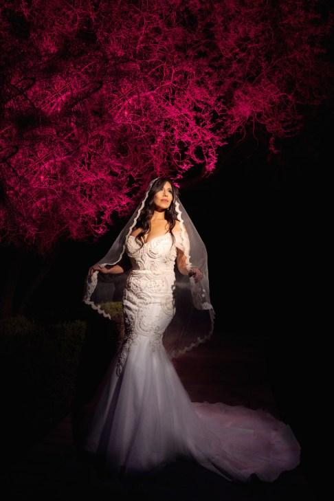Bridal Spectacular_ellagagianostudios_IJ-401